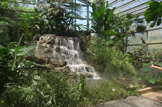 Honduras 3 Botannical Gardens