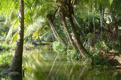 India 3 Kerala backwaters