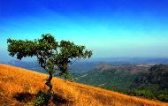 Volunteer-India