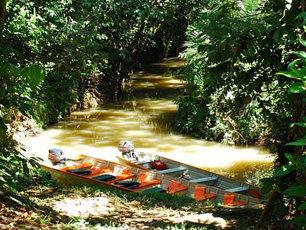 river-jungle-peru