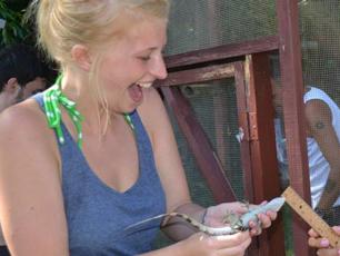 measuring-iguanas-honduras