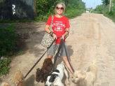 A volunteer who is dog walking.